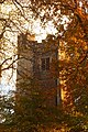 St Woolos Tower in Autumn.jpg