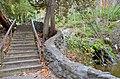 Stairs steps to bottom creek natural bridge state park 137 (30498422410).jpg