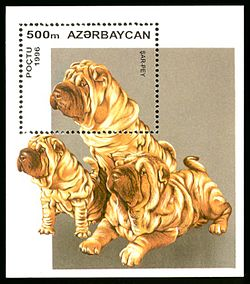 Stamp of Azerbaijan 405.jpg