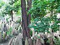 Starý židovský hřbitov, Praha 1.JPG
