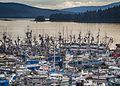 Statter Fish Armada 35.jpg