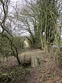Stour Valley Path, just north of Kedington. - panoramio.jpg