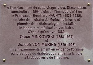 History of diabetes - Plaque in Strasbourg commemorating the 1889 discovery by Minkowski and Von Mering