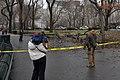 Strolling around Central Park, NYC (3146394611).jpg