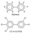 Structures of biphenyl and 3,3',4,4',5-pentachlorobiphenyl vertical.png