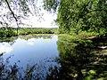 Sudbury River (Wayland Massachusetts) - DSC00512.JPG