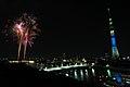 Sumidagawa Fireworks Festival2012.jpg