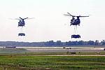 Super Saturday Air Show celebrates 70-year legacy of Air Assault Division 120811-A-CK382-013.jpg