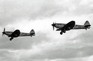 RAF Bramcote - Supermarine Seafire F.47s of 1833 Squadron RNVR based at Bramcote in 1953.