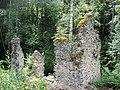Svartnäs Nybruket ruin efter spiksmedja 3519.jpg