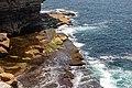 Sydney (AU), Coastal Cliff Walk -- 2019 -- 2326.jpg