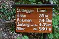 Tafel StalleggerTanne.JPG