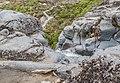 Taranaki Falls 21.jpg