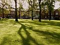 Terrace on Moss Lane East from Whitworth Park in Moss Side, Manchester - panoramio.jpg
