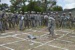 Texas National Guard (27735984232).jpg