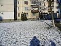 TgMures - Tudor - spring snow on Pandurilor - panoramio.jpg
