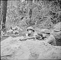 The British Army in North-west Europe 1944-45 BU1753.jpg