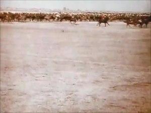File:The Delhi Durbar 1911.webm
