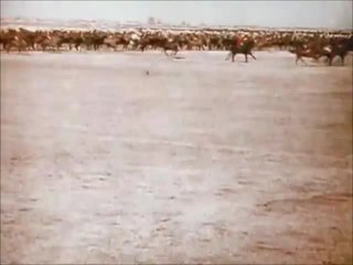 1912 film