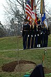 The Moon tree at Arlington.jpg