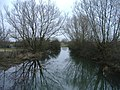 The River Thames at Waterhay - geograph.org.uk - 324596.jpg