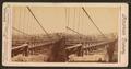 The Suspension Bridge, Nashville, Tenn, by Webster & Albee.png