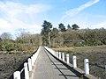 The Ynys Gaint causeway - geograph.org.uk - 586384.jpg