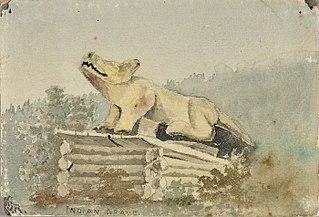 Indian Grave. Wolf Totem over Medicine Man Grave, Wrangell