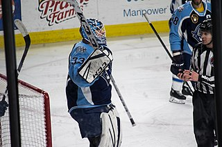 Tom McCollum American ice hockey goaltender