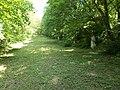 Torbágy Old Calvary. Meadow. - Katalinhegy, Hungary.jpg