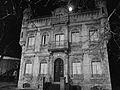Toulouse - Allée des Vitarelles - 20110121 (1).jpg