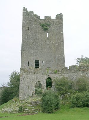 Tower houses in Britain and Ireland - Clonony tower house in County Offaly, Ireland