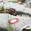 Trail mark in Slovenia.jpg