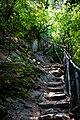 Trail to Koleshino waterfall.jpg