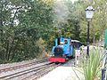 Train approaching Heatherslaw Station September 2014.JPG