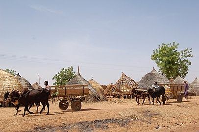 Transport in Niger
