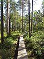 Tresticklan-national-park-entry.jpg