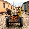 Trinidad-Selling Potatoes.jpg