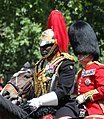 Trooping the Colour 2018 (07) (cropped) - Nana Kofi Twumasi-Ankrah.jpg