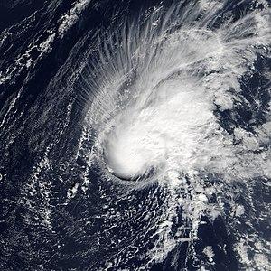 Tropical Storm Zeta - Image: Tropical Storm Zeta 2005