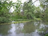 Tundzha River near Elhovo.jpg