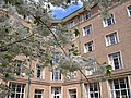 University Park MMB 37 Nightingale Hall.jpg