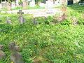 VPAT régi sírkövek.JPG