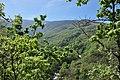Valle del Jerte 09.jpg