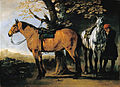 Van Calraet, Abraham - Two Horses - Google Art Project.jpg
