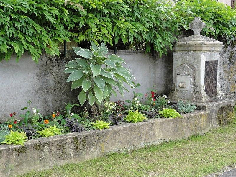 Vathiménil (M-et-M) fontaine A fountains in Meur