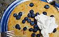 Vegan Blueberry Griddle Cake (5005329228).jpg