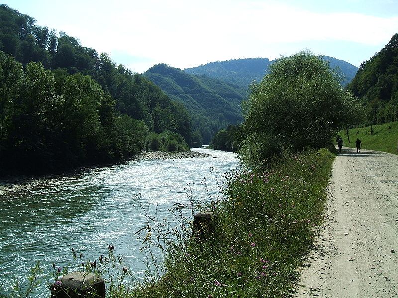 Bestand:Vişeu River.jpg