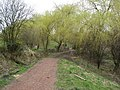 Vicar Water Footpath - geograph.org.uk - 725584.jpg