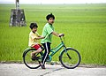 Vietnam & Cambodia (3336775741).jpg